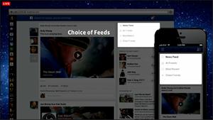 Facebook Newsfeed 2013